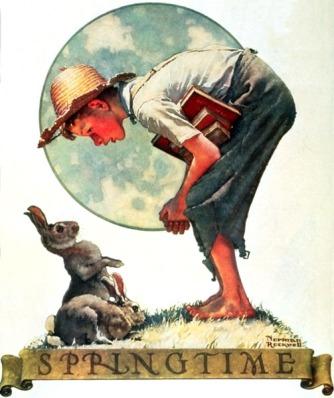 bunny-boy