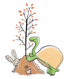 sketchbook turtle