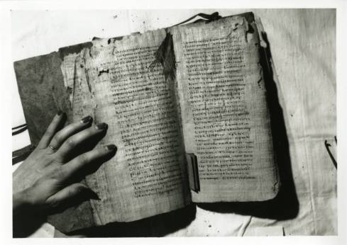 codex_vi_opened_at_the_center_of_the_quire